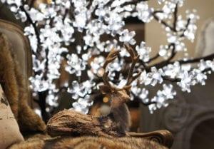 Зимний витринный олень. Так гордо возлегает на кресле, что понятно, что холодов он не боится. В чем его секрет?