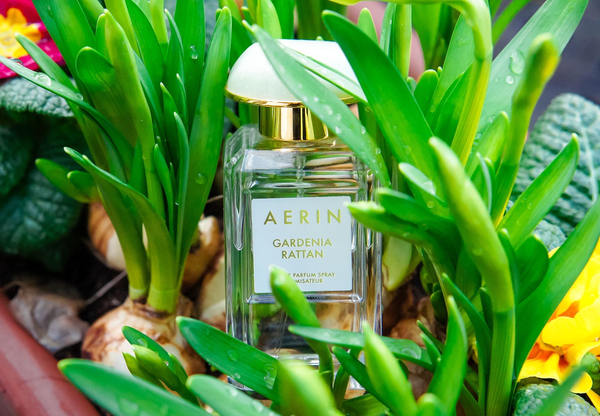 Parfüm-Aquarell: Gardenia Rattan von Aerin