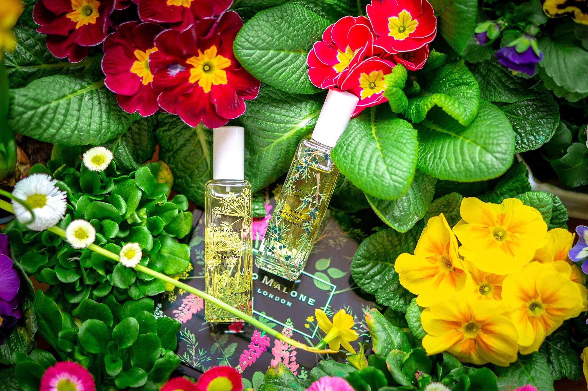 Полный обзор парфюмерной коллекции Wild Flowers & Weeds Jo Malone London