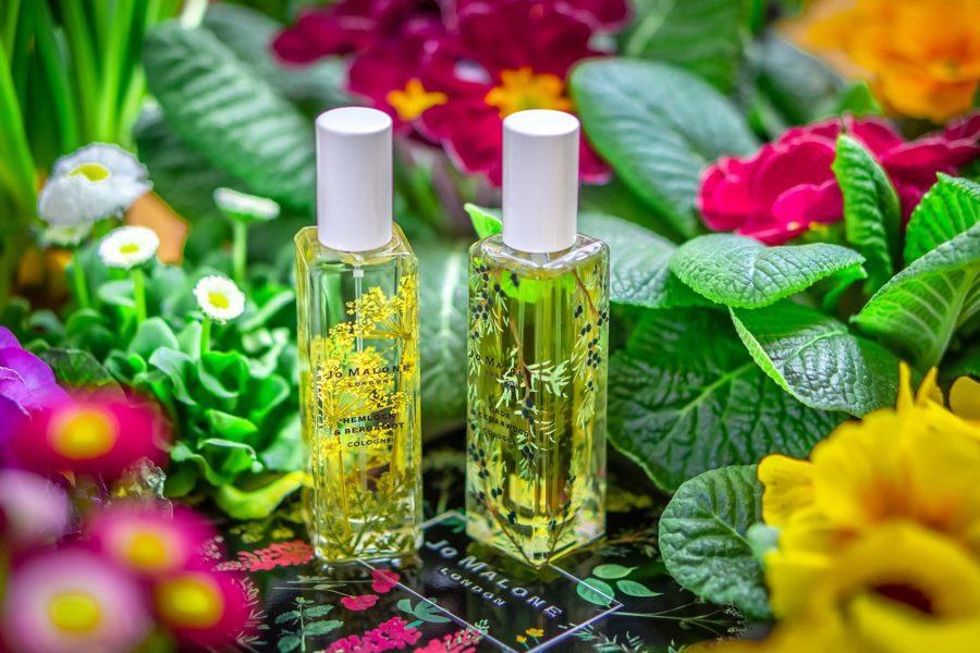 Jo Malone Wild Flowers & Weeds Hemlock Bergamot Cade Cedarwood perfume niche fragrance parfüm duft парфюм