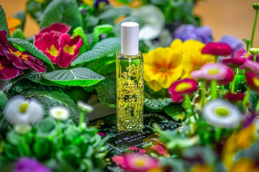 Jo Malone Wild Flowers & Weeds Hemlock Bergamot perfume niche fragrance parfüm duft парфюм