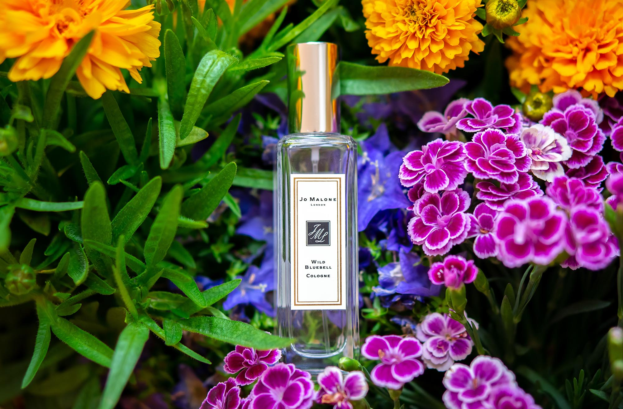 Jo Malone London Wild Bluebell Cologne perfume niche fragrance Parfüm Duft парфюм