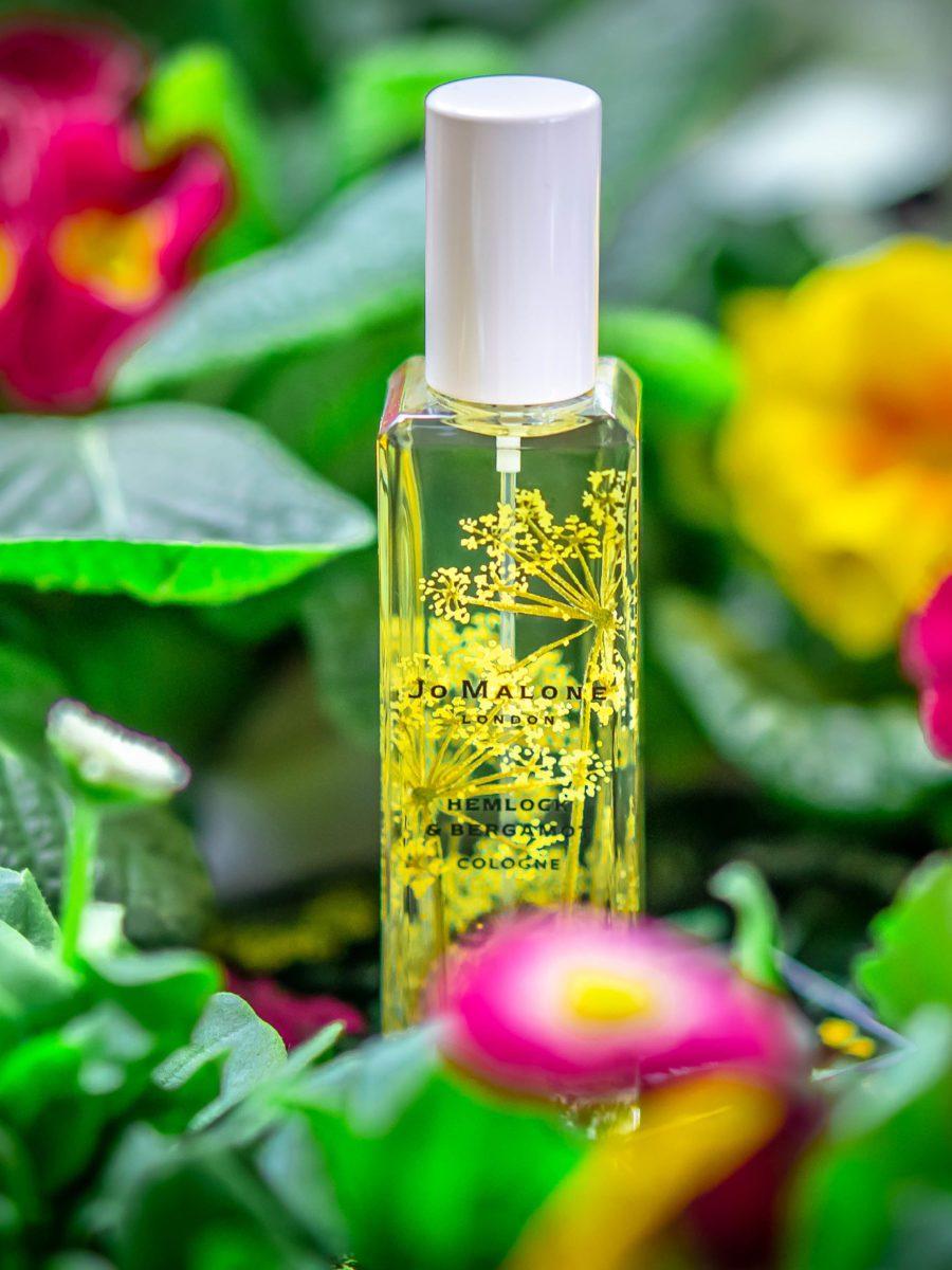 Cosmetiqua niche perfume calender 2020 Jo Malone Hemlock Bergamot
